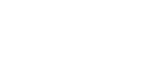 The Forest Solution Logotyp